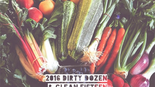 Dirty Dozen Clean Fifteen 2016
